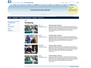HTML website detail